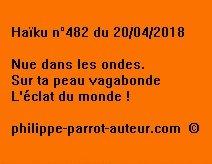 Haïku n°482  200418