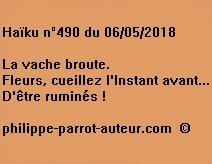 Haïku n°490  060518