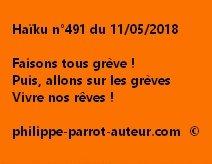 Haïku n°491  110518