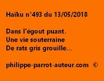 Haïku n°493  130518
