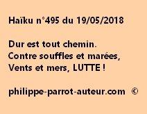 Haïku n°495  190518