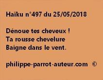 Haïku n°497  250518