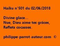 Haïku n°501  020618