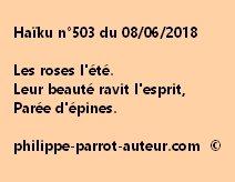 Haïku n°503  080618