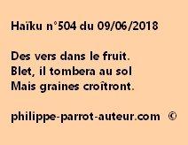 Haïku n°504  090618