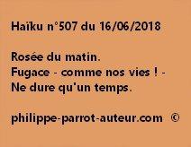 Haïku n°507 160618