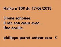Haïku n°508  170618
