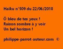 Haïku n°509  220618