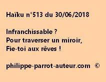 Haïku n°513  300618