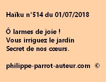 Haïku n°514  010718