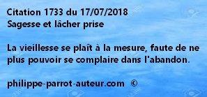 Cit 1733 170718