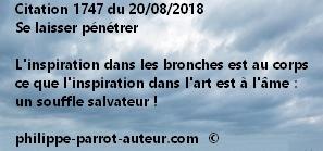 Cit 1747  200818