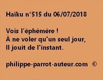Haïku n°515  060718