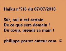 Haïku n°516  070718