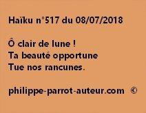 Haïku n°517  080718