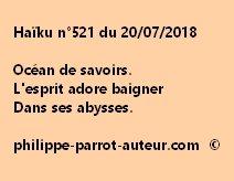 Haïku n°521  200718