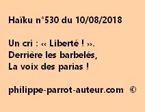 Haïku n°530  100818