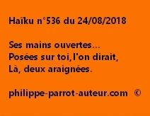 Haïku n°536  240818 2