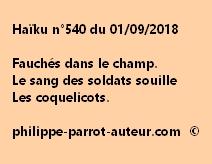 Haïku n°540  010918