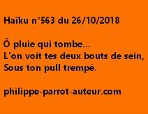 Haïku n°563  261018