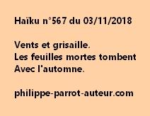 Haïku n°567  031118