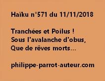 Haïku n°571  111118