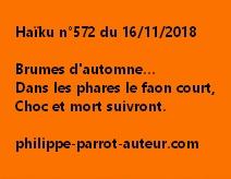 Haïku n°572 161118