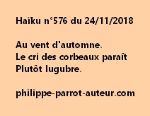 Haïku n°576 241118