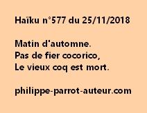 Haïku n°577 251118