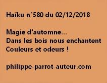 Haïku n°580  021218