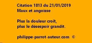 Cit 1813  210119