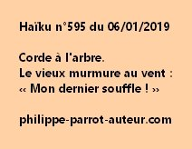 Haïku n°595  060119