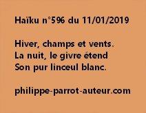 Haïku n°596  110119 hp