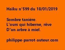 Haïku n°599  180119 hv