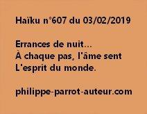 Haïku n°607  030219