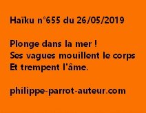 Haïku n°655  260519