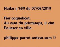 Haïku n°659  070619