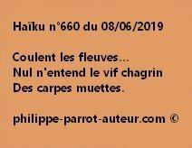 Haïku n°660  080619