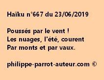 Haïku n°667  230619