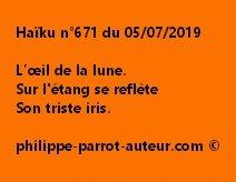 Haïku n°671  050719