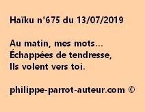 Haïku n°675  130719