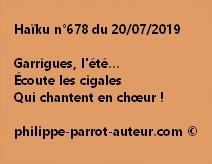 Haïku n°678  200719