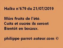 Haïku n°679  210719