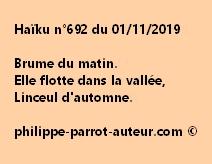 Haïku n°692  011119
