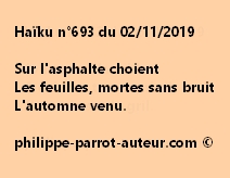 Haïku n°693  021119