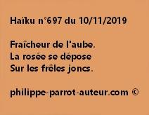 Haïku n°697  101119
