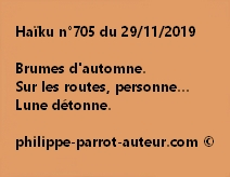 Haïku n°705 291119