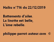 Haïku n°716 221219