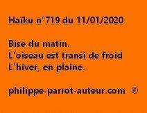 Haïku n°719 110120
