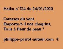 Haïku n°724 240120